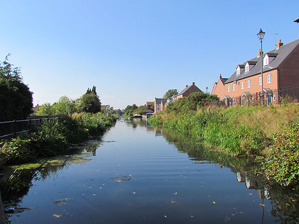 On a sunny day the canal looks clear with lots of water plants at the side and some new housing facing the canal.