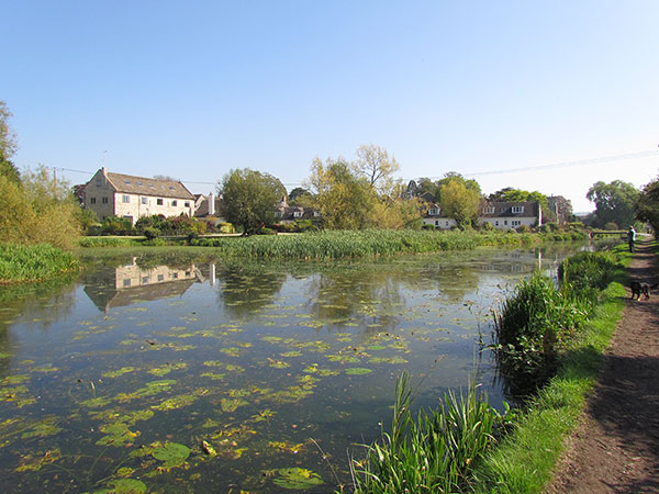 View across water with waterlilies on a sunny day with stone cottages in the background.